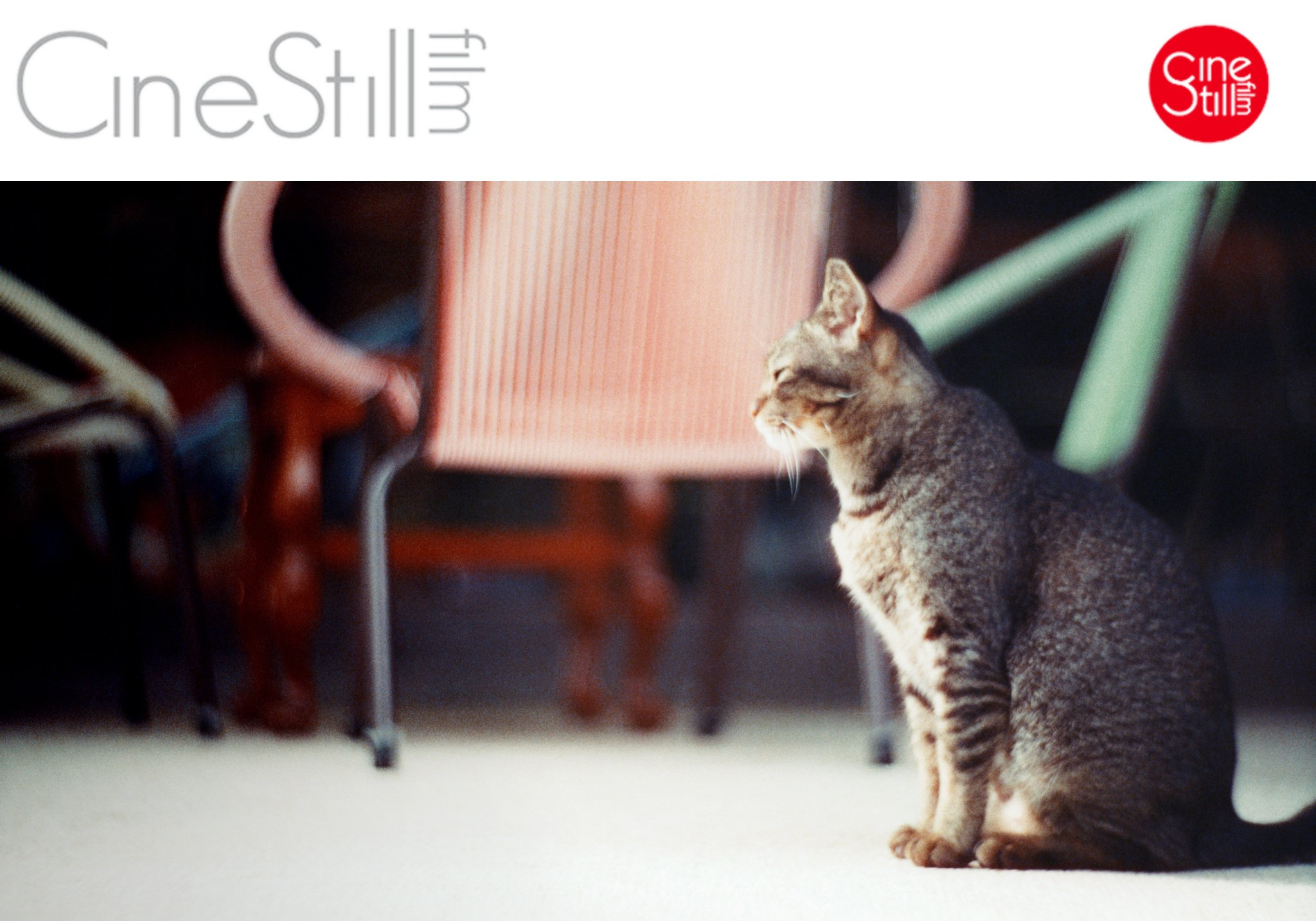 CineStill featured The Petzval Experiment in collaboration with Lomography Singapore